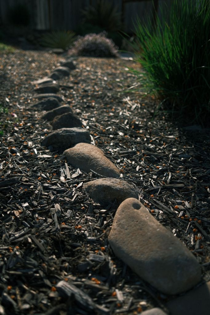 A trail of stones