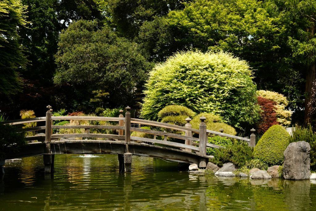 Bridge over water in Japanese garden