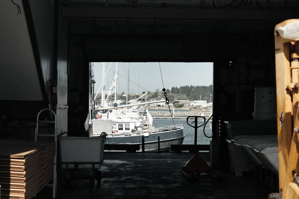 Entryway to docked boats