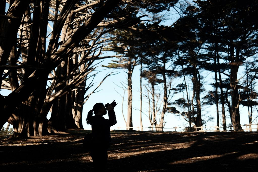 Silhouette of a lady taking a photo